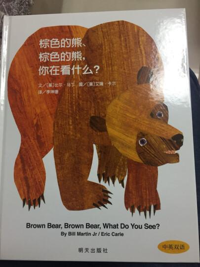 棕色的熊棕色的熊你在看什么(中英双语信谊世界精选图画书)(精 启蒙认知子共读幼儿故事书籍 晒单图