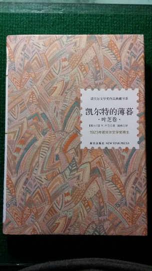 诺贝尔文学奖作品典藏书系·小说系列第2辑(套装共6册) 晒单图