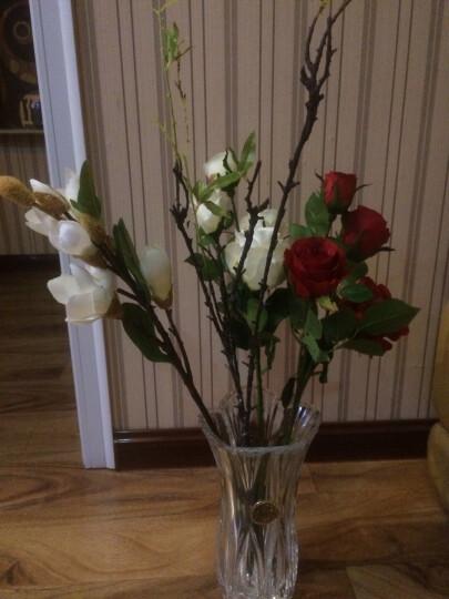 原野(yuanye) 花瓶透明水晶玻璃花瓶水培 客厅装饰花器富贵竹百合花摆件 AB066 晒单图