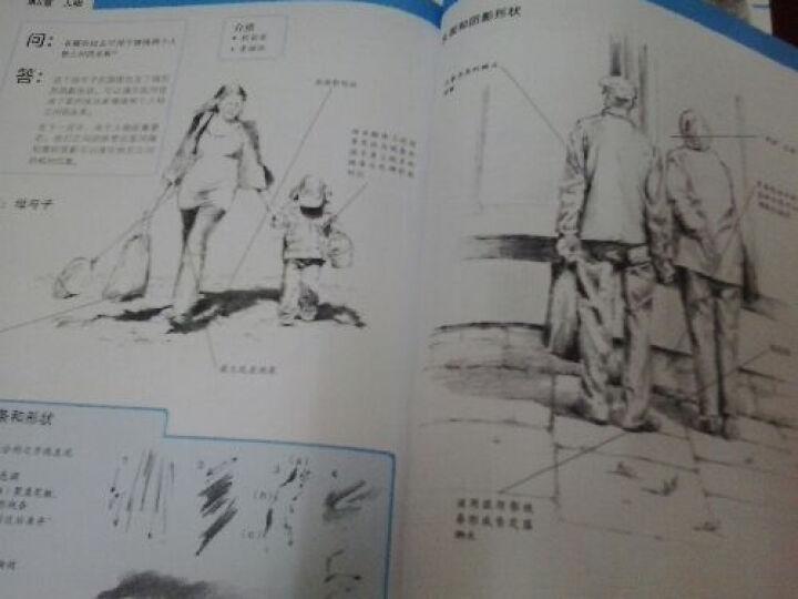 世界绘画经典教程:素描的重点与难点 晒单图