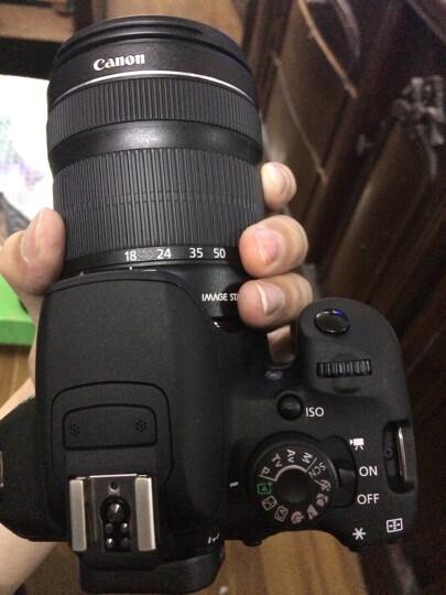 佳能(Canon) EOS 700D 单反套机 (EF-S 18-135mm f/3.5-5.6 IS STM镜头) 晒单图