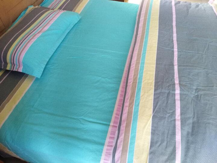 北极绒 床上四件套纯棉 斜纹全棉三件套床品套件 床上用品被套床单4件套 彩色三角 1.5-1.8米床通用(被套200x230cm) 晒单图