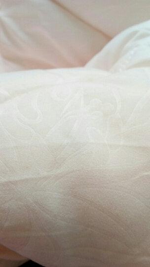 水星家纺(MERCURY) 克洛怡抗菌七孔冬被 白色加厚冬被芯被子 加大双人被芯220*240cm 晒单图