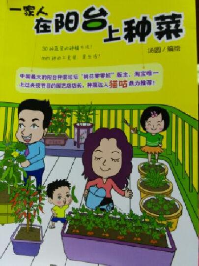 一家人在阳台上种菜 晒单图