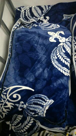 南极人home 法兰绒四件套加厚床裙式四件套珊瑚绒床品套件床单被套 条纹-浅绿 1.5/1.8米床通用适合2.0*2.3被子 晒单图