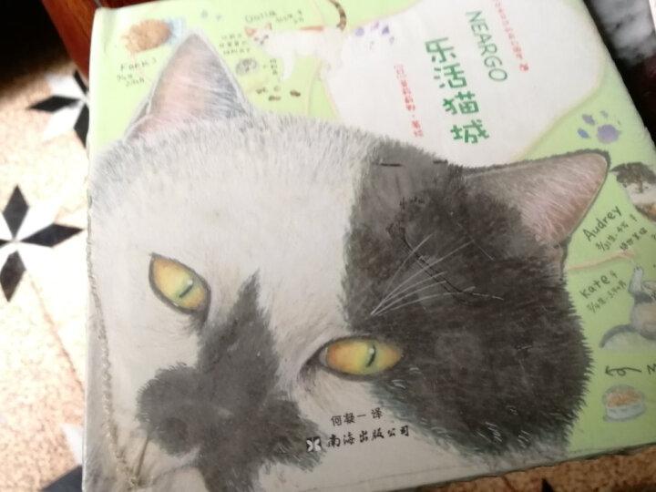 全三册 Neargo猫国宝贝:一个你没未见过的奇幻国度 魅力猫咪+乐活猫城+猫国 晒单图
