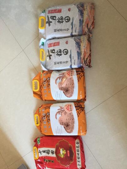 十月稻田 稻花香米 5kg(东北大米 当季新米) 晒单图