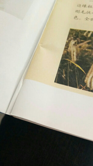 【送书4本共11期11本】作文与考试杂志(初中版)2019年第16-26期中考作文素材期刊杂志打包 晒单图