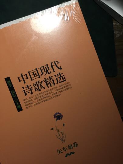中国现代诗歌精选·矢车菊卷 晒单图