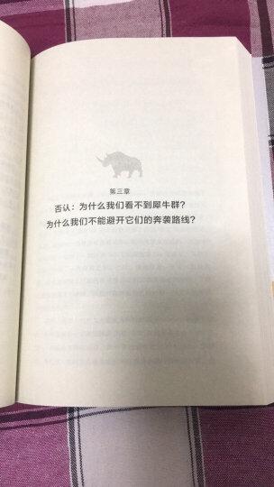 灰犀牛:如何应对大概率危机 晒单图