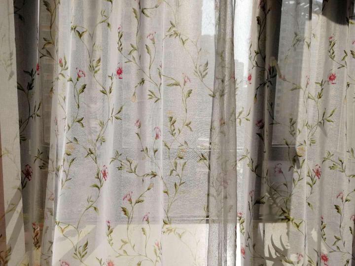 梵迪欧窗帘 花如烟田园清新简约现代窗帘窗纱纱帘成品套装 客厅卧室阳台飘窗定制窗帘布 纱-蓝色 挂钩1米宽x2.7米高 高可改 要几米拍几件 晒单图