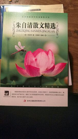 朱自清散文精选/大语文丛书·语文新课标必读 晒单图