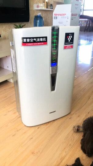 夏普(SHARP) 空气净化器 KC-W380SW-W 认证消毒机 除雾霾PM2.5除甲醛净离子群杀菌加湿 晒单图