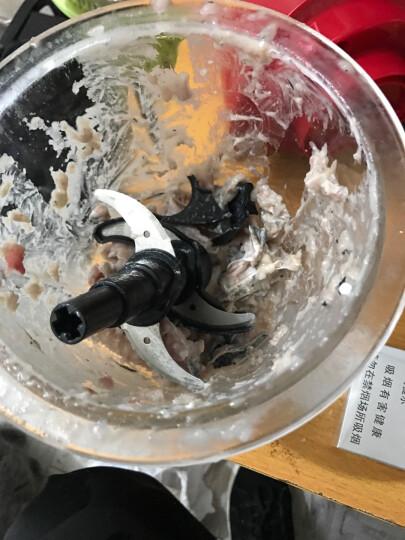 华迅仕(Fxunshi)绞肉机家用电动不锈钢多能料理机绞馅机碎肉打肉机切菜搅拌机 红色 晒单图
