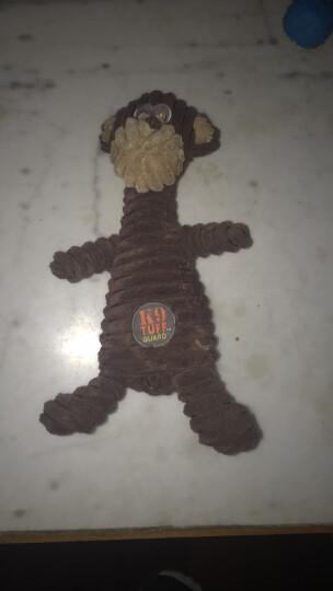绮敏CharmingPet狗狗玩具泰迪金毛耐咬磨牙宠物发声玩具 猴子 61199 晒单图