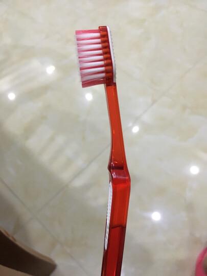 LG 锐致(REACH)超护牙刷 (成人中毛)(颜色随机发放)(韩国原装进口) 晒单图