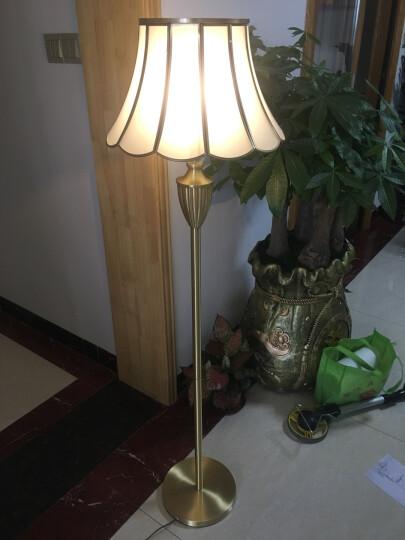 欧式客厅玻璃落地灯欧美卧室书房大厅铜地灯全铜立式大台灯智能遥控led落地灯 H A款落地灯玻璃灯罩+LED灯泡 晒单图