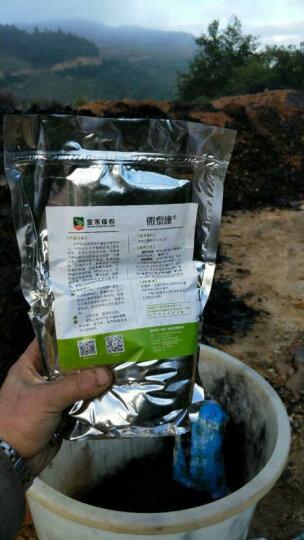 微泰康 有机肥腐熟剂 发酵剂一2公斤 有效活菌数≥5亿  木霉菌发酵菌剂,秸秆腐熟剂 绿色 1袋 晒单图