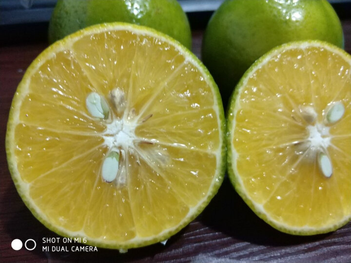 【雅安馆】四川 皇帝柑 2斤装 单果约100克 柑橘子贡柑 桔子 晒单图