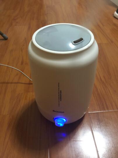 志高(CHIGO) ZG-C605 加湿器 家用办公室卧室静音迷你香薰加湿机5L容量 白色触摸 晒单图