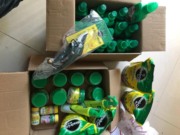 美乐棵 水培型营养液250ML/瓶 家庭园艺种植液 水培植物浓缩营养液 晒单图
