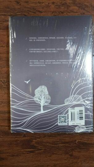 自在独行+孤独是生命的礼物(套装共2册) 晒单图
