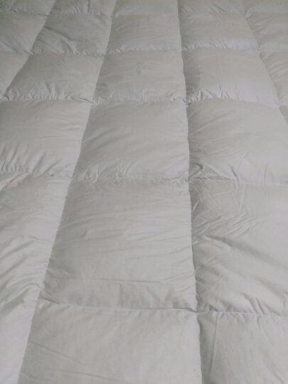 柳桥家纺 羽绒床垫 加厚 白鹅绒单双人五星酒店榻榻米护垫软褥子 白色 180cm*200cm 晒单图