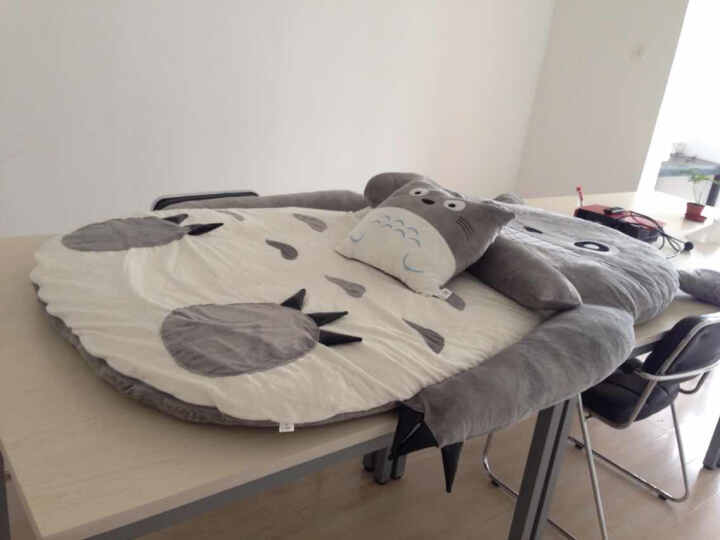 采兰之风 龙猫床垫榻榻米单人双人懒人沙发床卡通床垫 睡垫可拆洗大靠垫 成人睡袋 龙猫床 龙猫无牙款 2.5*1.8m双人 晒单图