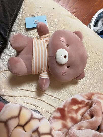 蓝白玩偶 毛绒玩具小白兔子熊大象公仔小红豆兔娃娃小号可爱女孩儿童节礼物 熊 23cm 晒单图