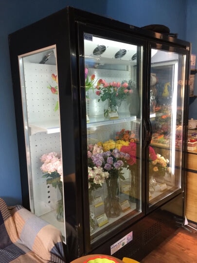 艾豪思 立式展示柜双开门鲜花柜玻璃透明保鲜柜冷藏鲜花植物柜 1.2米以上直冷 定制费/米 晒单图