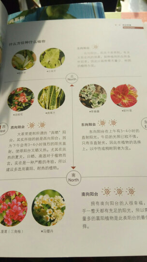 阳台种花与景观设计(珍藏版)/绿指环生活书系 晒单图