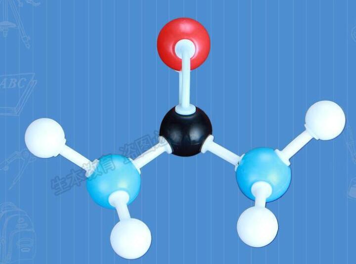 分子结构模型ZX-1004中学有机化学分子结构模型球棍+比例模型有机分子 晒单图