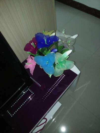 丝袜花材料包 DIY手工丝网花丝袜花材料 新手材料包 玫瑰花艺材料做花材料套装 丝网袜材料 10朵 百合花材料包 晒单图