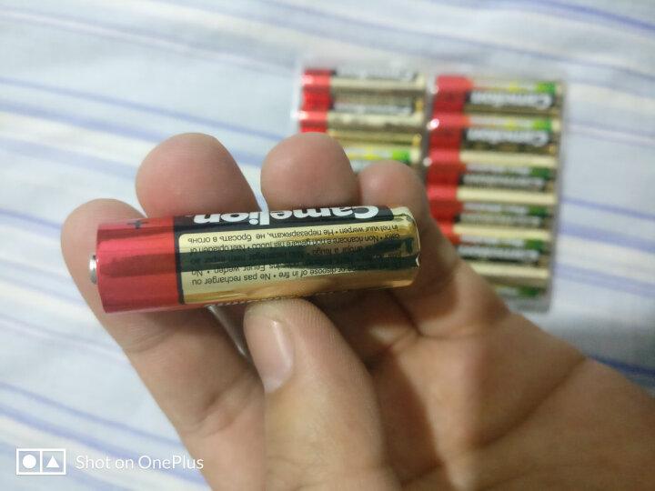 飞狮(Camelion)碱性电池 干电池 LR20/D/大号/1号 电池 4节 燃气灶/热水器/收音机/手电筒/电子琴 晒单图