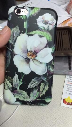 丹非 苹果iPhone7手机壳6/6s/7/8plus女士复古玫瑰花硅胶保护套全包软壳 山茶 6/6s 晒单图