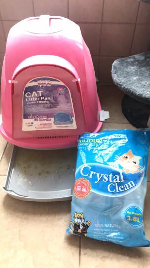 浦力顿猫砂 水晶猫砂3.8L 猫沙 去臭味猫砂 猫清洁用品 猫咪清洁沙 单包 晒单图