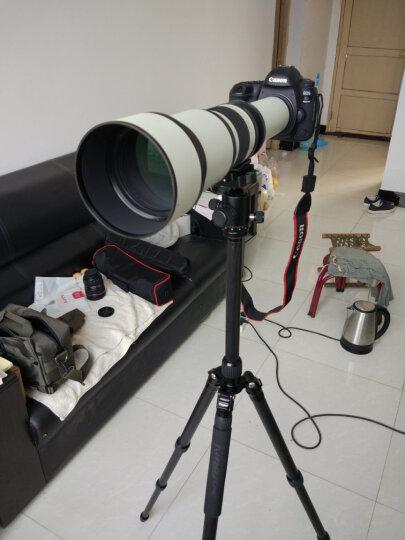 变色龙cen 650-1300mm超长焦镜头单反相机超微单远摄变焦射月打鸟望远镜动物拍摄 索尼E口-黑色 官方标配 晒单图