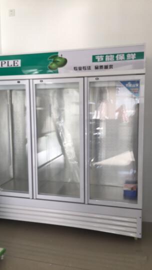 乐创(lecon)立式冰柜双门展示柜冷藏保鲜三门商用冰箱饮料超市冷柜水果厨房陈列柜凉菜点菜柜直冷风冷 三门草绿色 风冷款 晒单图