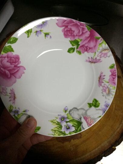 海尔(Haier)洗碗机家用 免安装台式  6套 小海贝鎏金黑视窗 自由安装小贝台式洗碗机 晒单图