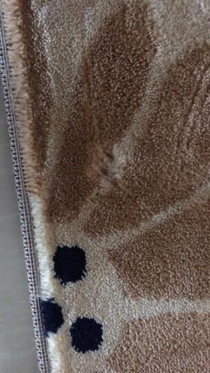 丽家地毯 客厅卧室茶几沙发餐厅简约防滑地毯 米奇4919Y 160*230cm 晒单图