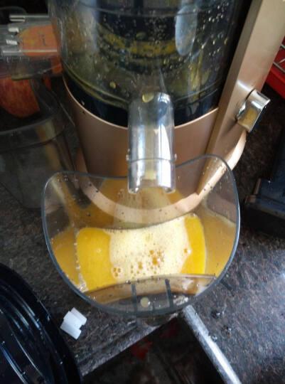 飞利浦(PHILIPS)原汁机 家用低速型可做果汁可榨汁可做纯果冰激凌慢汁机 HR1884/00 晒单图