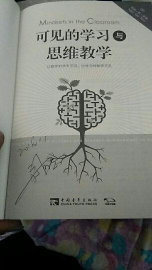 可见的学习与思维教学:让教学对学生可见,让学习对教师可见 晒单图