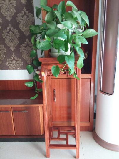 龙上龙(longshanglong)东阳木雕实木hua li 木格子阳台落地式花架中式仿古客厅盆景架 非hua 31*31*88 晒单图