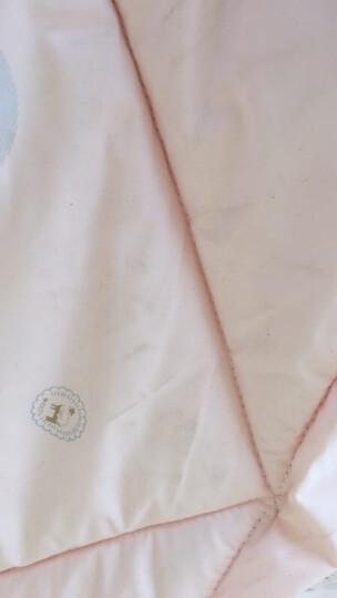 惠茜家纺 羊毛被子冬被加厚驼毛被 保暖绒冬被春秋被 单人双人棉被芯羊绒被芯加厚褥子 粉色 2.0mX2.3m    8斤---冬被 晒单图