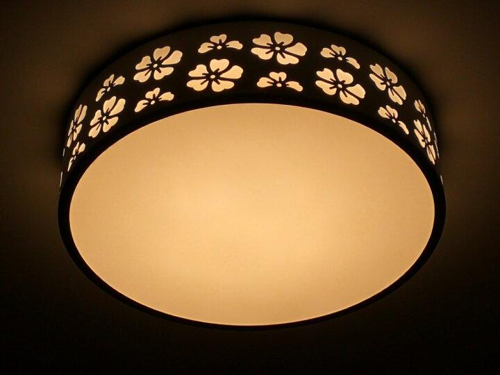 欧普照明led灯板 一体化日光灯盘 超亮节能灯管全套改造光管 (1只装)*24瓦三档*适用底盘直径≥30厘米 晒单图