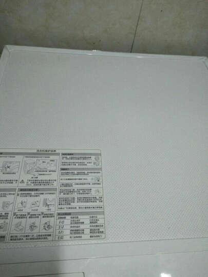 美的(Midea)洗衣机全自动滚筒8公斤 变频智能节能 高温除菌 洗衣机  晒单图