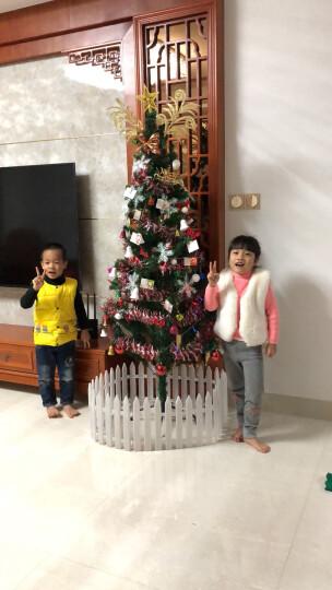 格瑞芬(Gryffon) 装饰品圣诞树套餐节日花环 长帽圣诞礼品礼物 挂袜圣诞鹿彩灯服饰 1.8米豪华套餐(圣诞树栅栏树裙) 晒单图