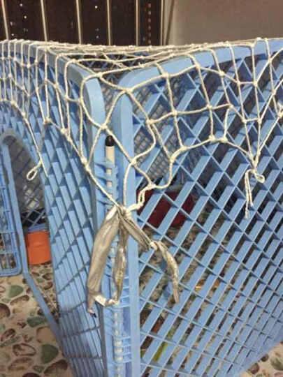 捣蛋鬼猫狗笼子小型犬 可折叠宠物栅栏围栏小狗笼子泰迪比熊用品 蓝色 长宽高:100*100*75CM 晒单图