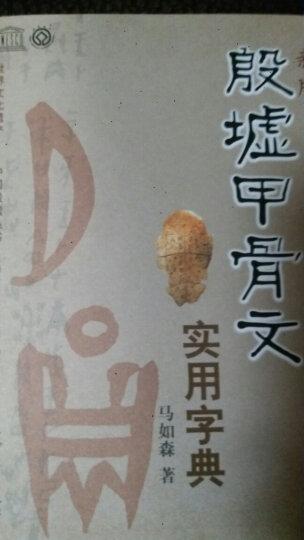 世界文化遗产·中国殷墟丛书:殷墟甲骨文实用字典(新版) 晒单图