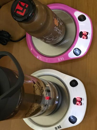 雅集 茶具配件 熊时代恒温宝保温底座暖奶器 智能加热杯垫茶座 晒单图